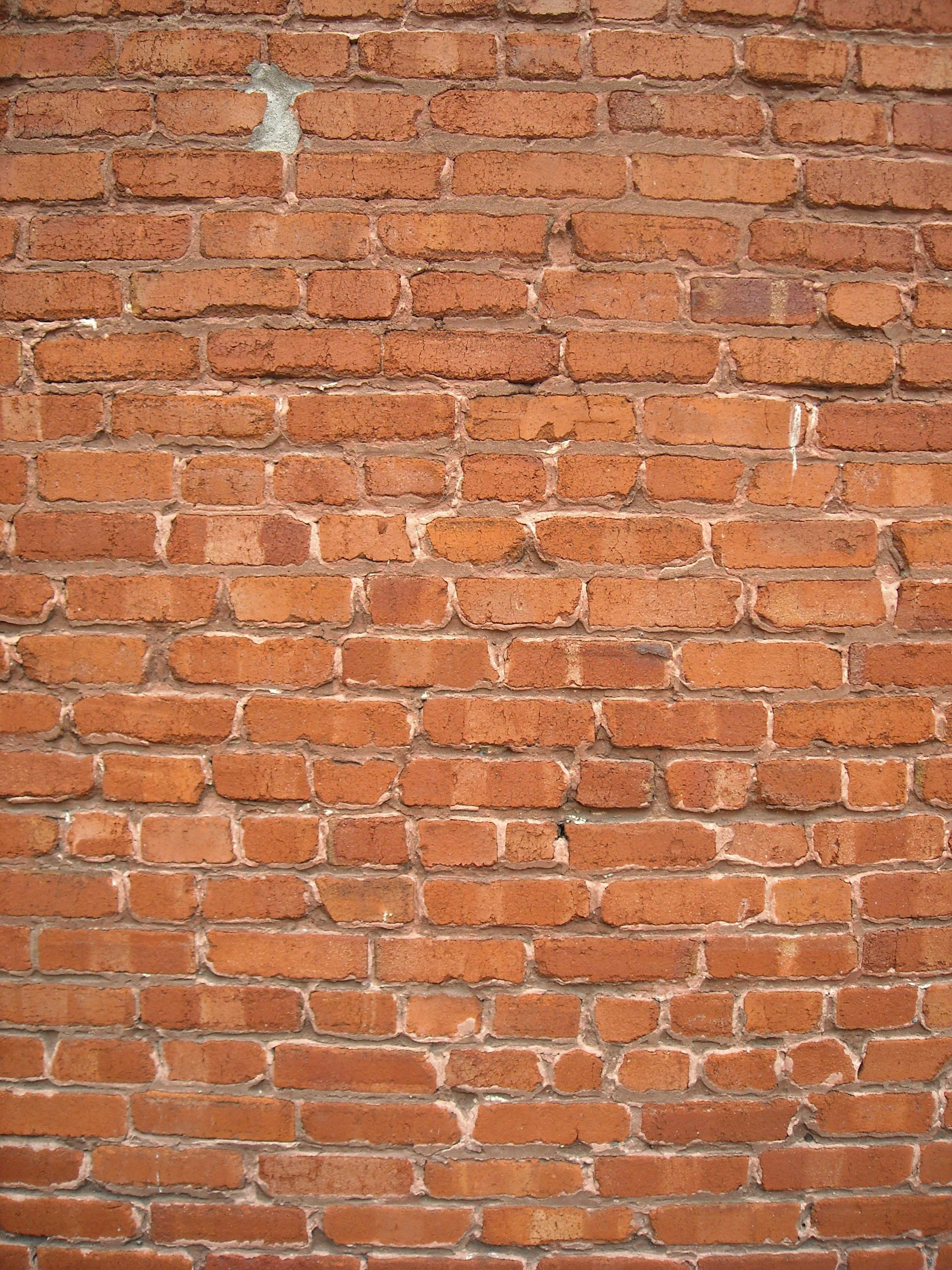 Free photograph; brick, wall, brush, texture