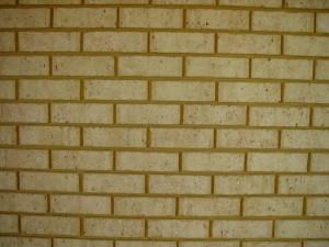 calcaire, regardez, brique, mur