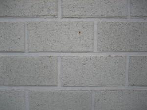 white, stone, brick, wall, pattern