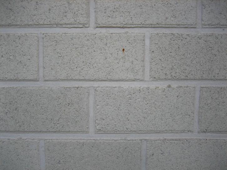 blanc, pierre, brique, mur, modèle