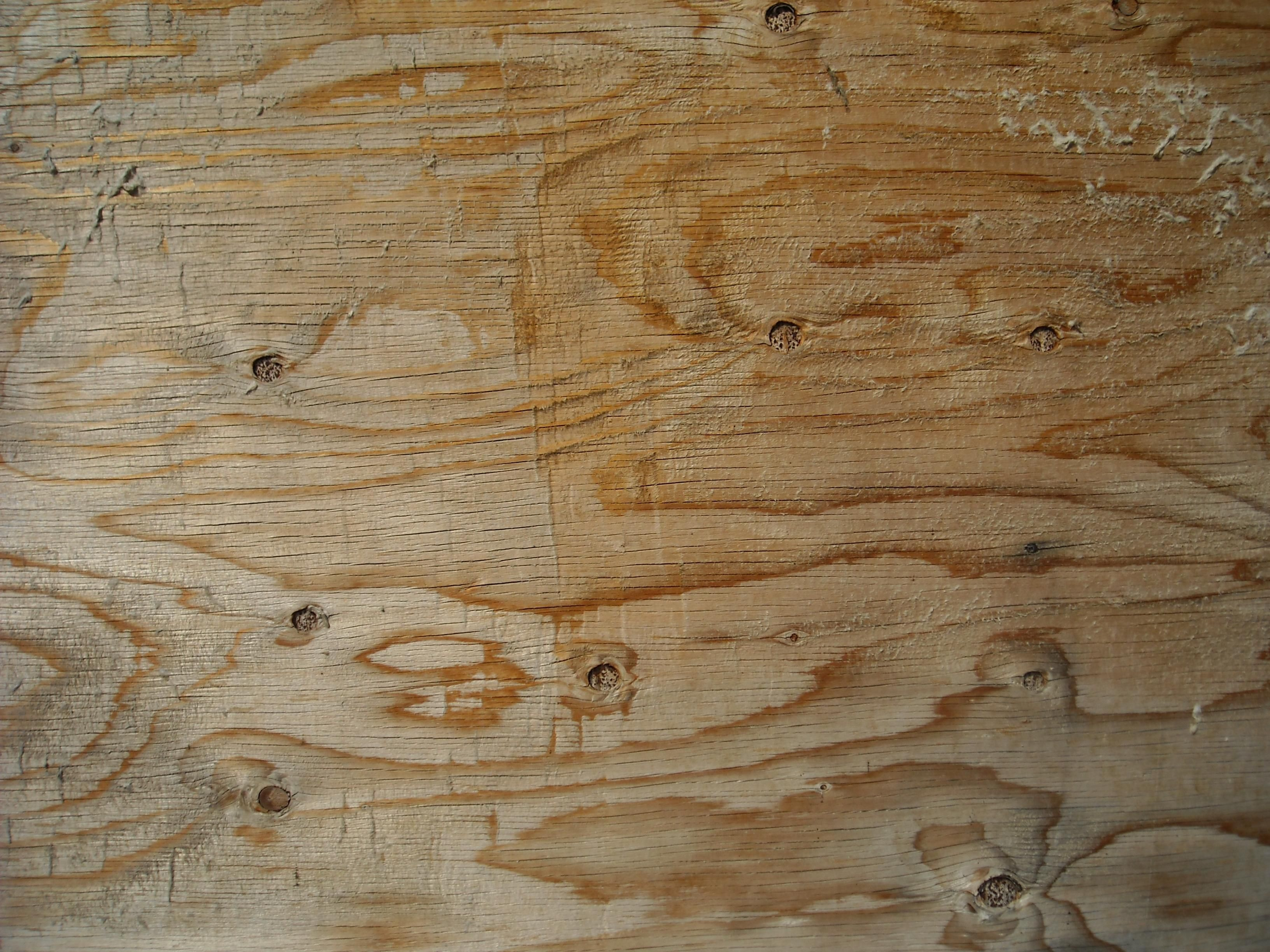 Free Picture Light Wood Texture