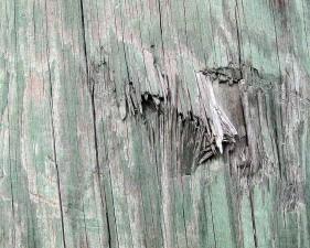 vieux, bois, texture