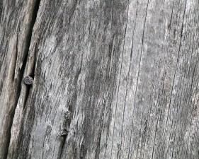 alterato, granaio, legno, chiodo