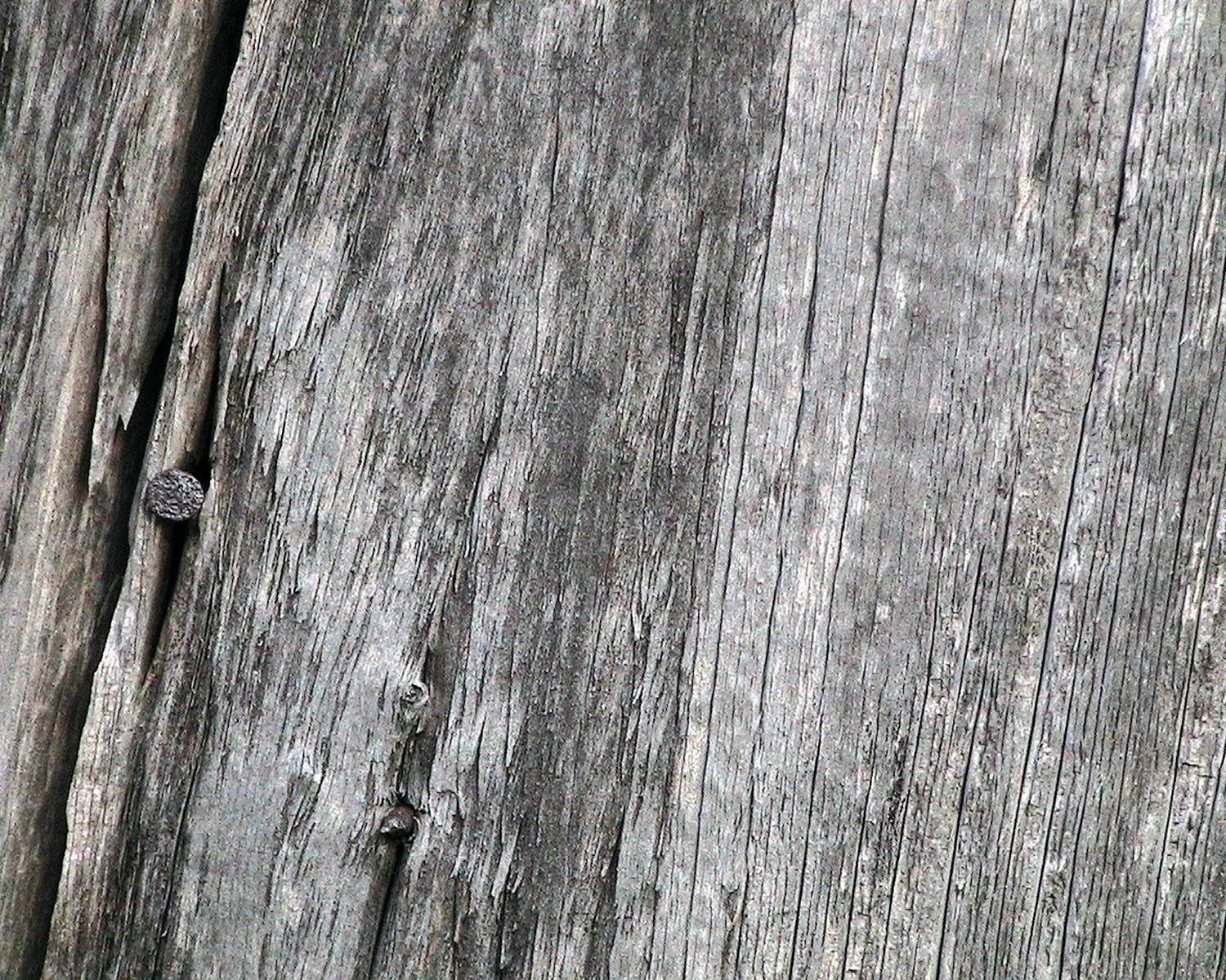 Free Picture Weathered Barn Wood Nail