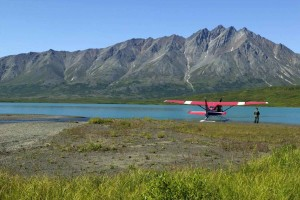 person, stands, small, plane, lake