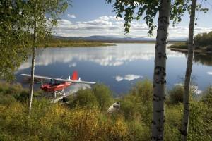 l'eau, jet, avion, lac, rivage, petit, bateau