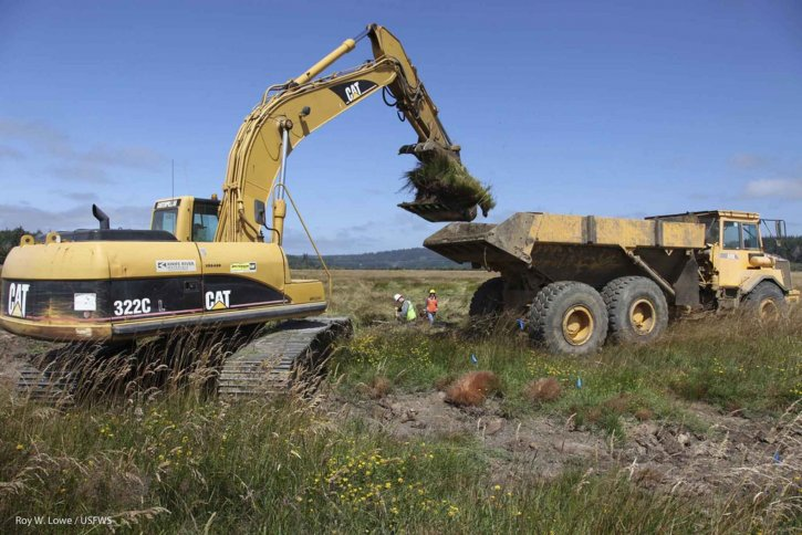 big, heavy, trucks, excavator, machine, working