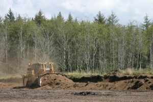 bulldozer, cutting, down, cranberry, bog, dikes, contouring, bog