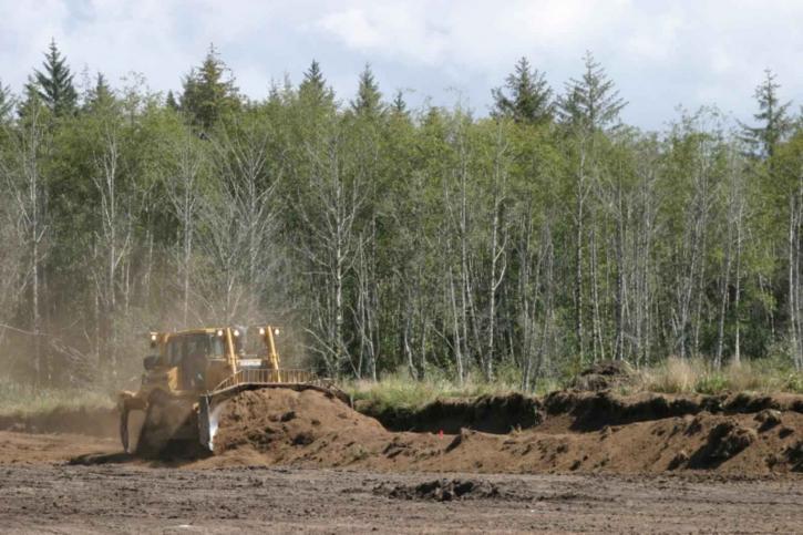 bulldozer, coupe, vers le bas, la canneberge, marais, digues, contouring, bog