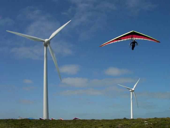 flyvende, elektriske, plante