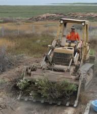 man, driving, bulldozer