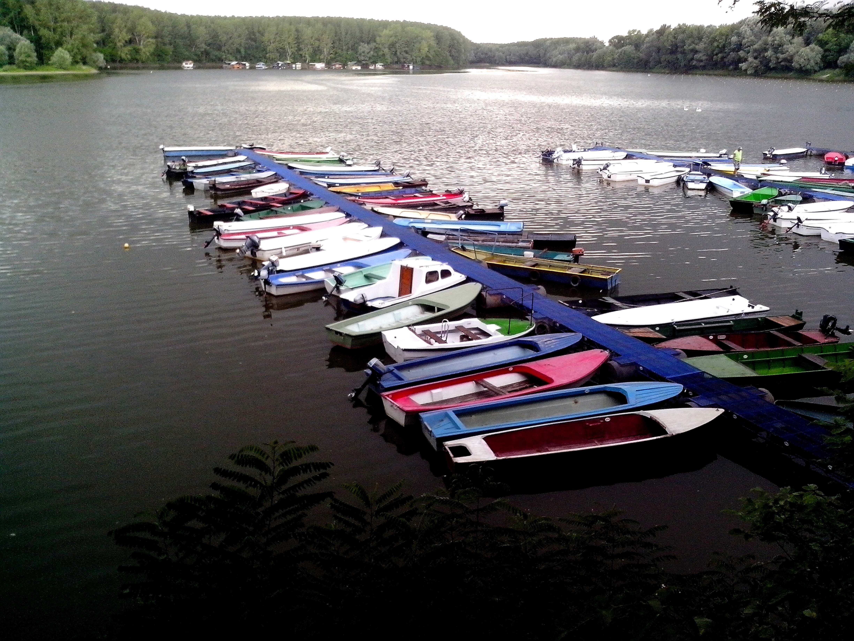 Free photograph; boats, dock, marina