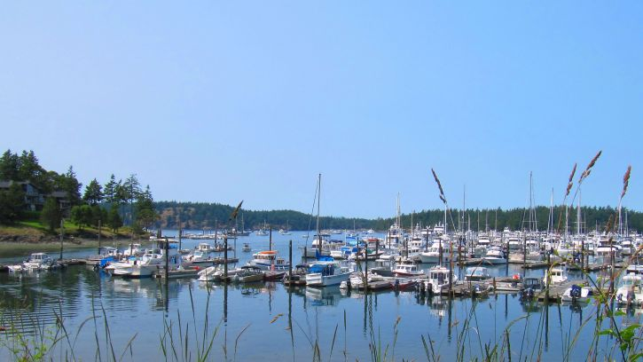 dock, boats, Juan