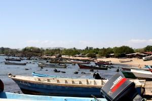 vissen, boten, gebieden, kust, thuis, mangrove, bossen