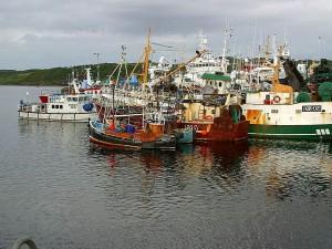 fiskebåter, Irland