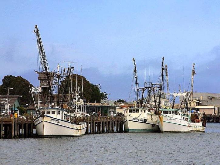 fiskebåter, piers, havnen, havet