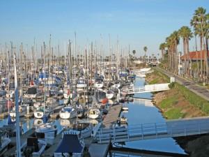 many, docked, boats