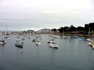 monterey, harbor, water, boats