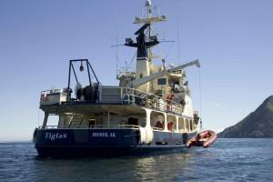loading, skiff, big, ship