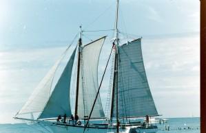 voilier, lac, Michigan, vieux, photo
