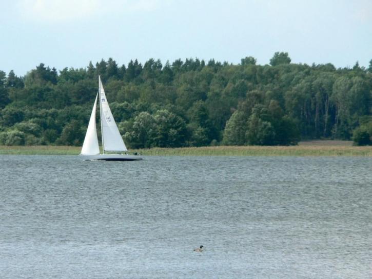 sailingboat, wind