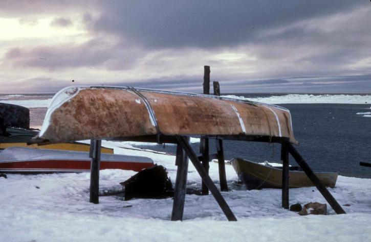 skin, covered, boat