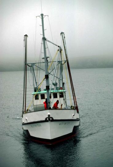 prijevoz, rad, brod