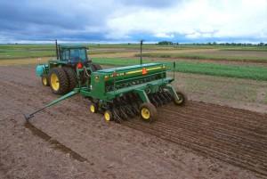 fermier, tracteur, plantation