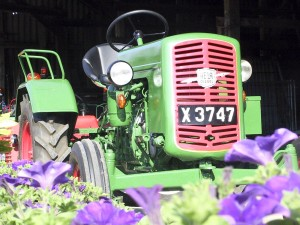 green, old, tractor