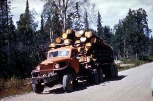 logging, lastebil, laste, så, logger, veien, skog, tre