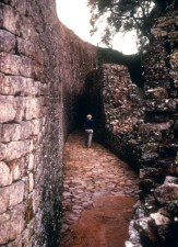 Year, old, great, Zimbabwe, ruins, one, African, sites