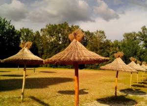 reed, umbrellas, beach