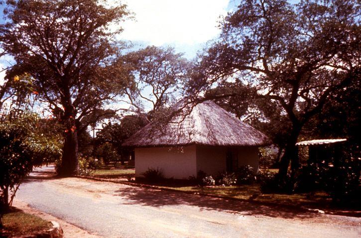 marginea drumului, locale, Rhodesian, din Zimbabwe, aeroport