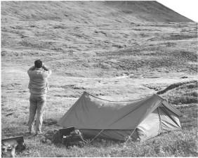 namiot, camper, obrazu, czarno-białe
