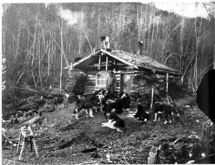 black and white, image, man, front, log, cabin, surrounded, dogs