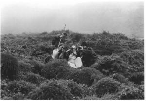czarno-białe, biologów i zdjęcie, obraz puffi