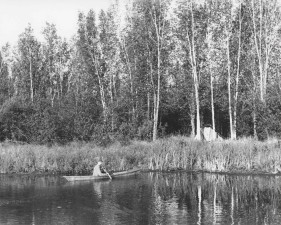 black and white, image, man, canoe, tent, camp, paddling, tall, grass
