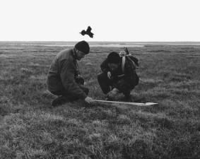 черно-бяла фотография, измерване, птица, гнездо