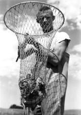 boy, holds, duck, net, historical, image, vintage