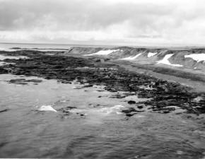 littoral, vieux, cru, photographie, nature, paysage