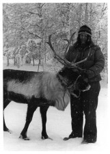 female, holds, tame, reindeer