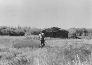 grijswaarden, foto, man, wandelen, gras, terraine, twords, log, cabine