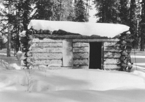 grayscale, picture, log, cabin, snow, covered, snow