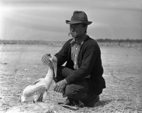 history, photo, man, dressed, cowboy, bird