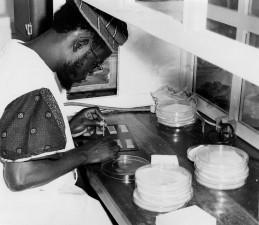 laboratorian, sentado, de laboratorio, la realización, la viruela, relacionado, investigación