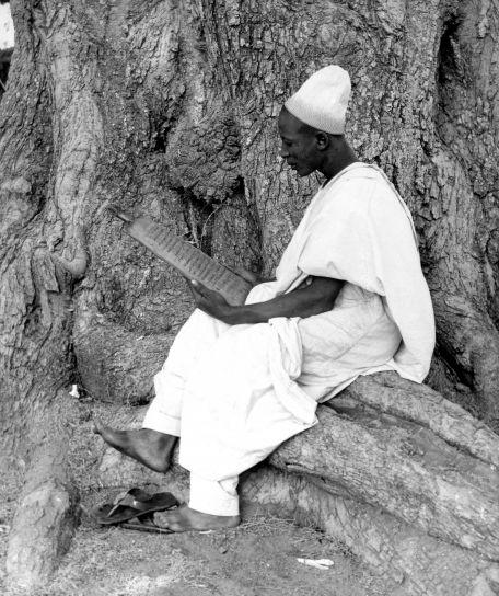 posedenie, nigerien, muž, fotografia, čítanie, drevené, písanie, tablet