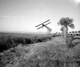 Stearman, avión, pulverización, insecticida, la malaria, el control, las operaciones, la sabana