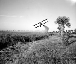 Stearman, vliegtuig, spuiten, insecticide, malaria, controle, operations, savannah