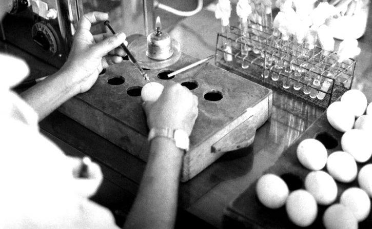 technician, Bangladesh, laboratory, process, creating, smallpox, vaccine