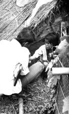 očkování, dívka, Rodina, Bastee